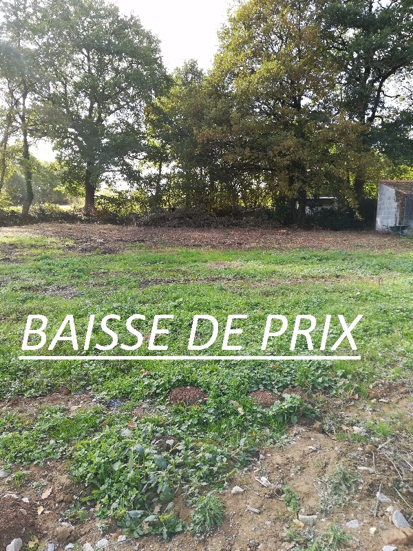 Annonce Vente Terrain Saint Florent des Bois (85310) 1235 m u00b2 (62 500 u20ac) 992738525988 # St Florent Des Bois