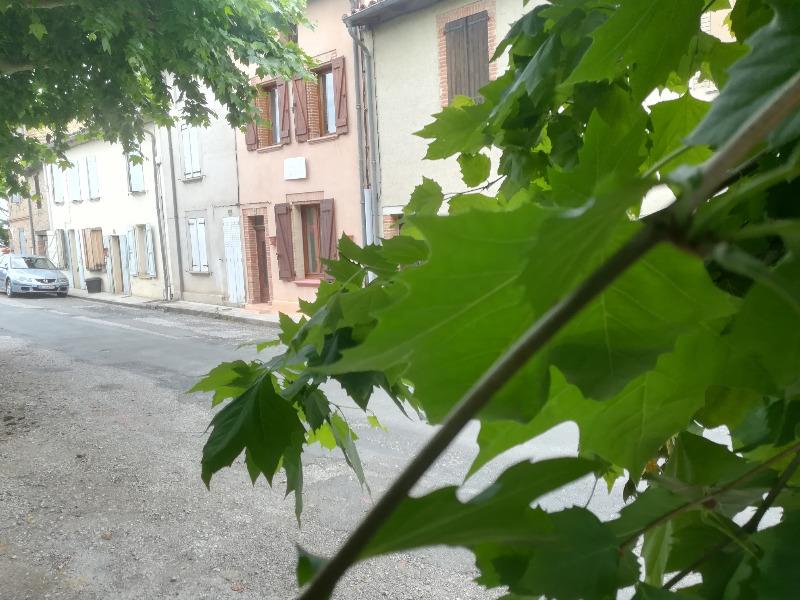 Miniature photo - 1 / 7